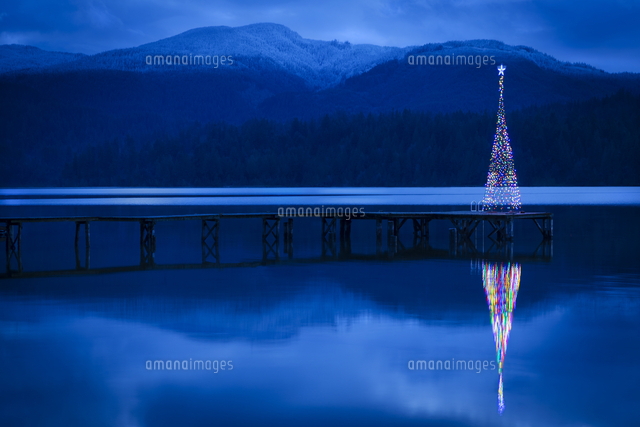 Christmas tree reflecting in lake