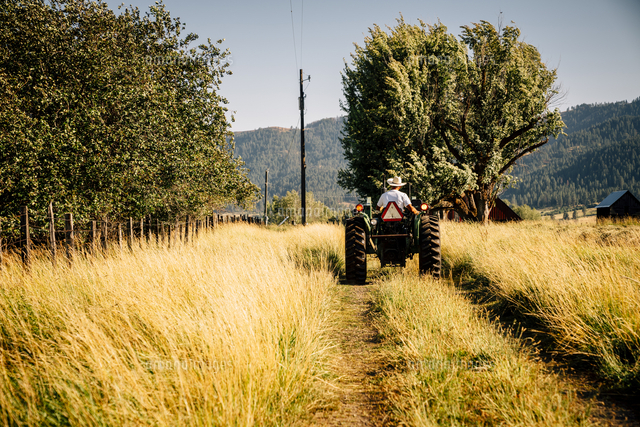 Caucasian farmer riding tractor