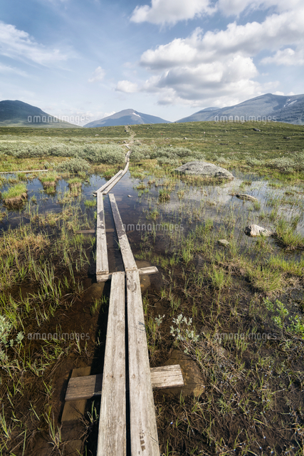 Boardwalk in marsh near mountains