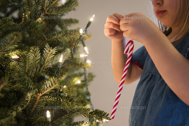 Caucasian girl hanging candy cane on Christmas tree