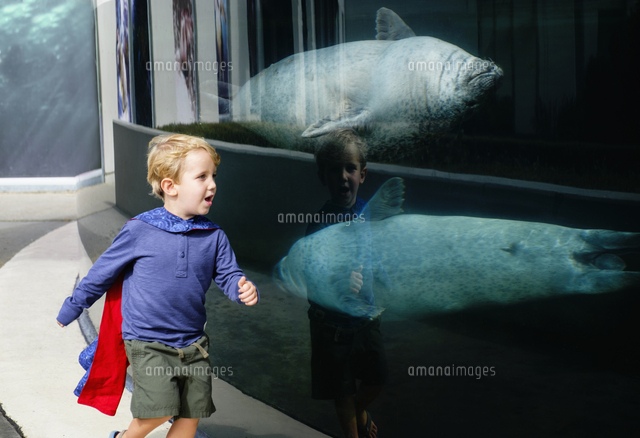 Caucasian boy running in aquarium near swimming seals