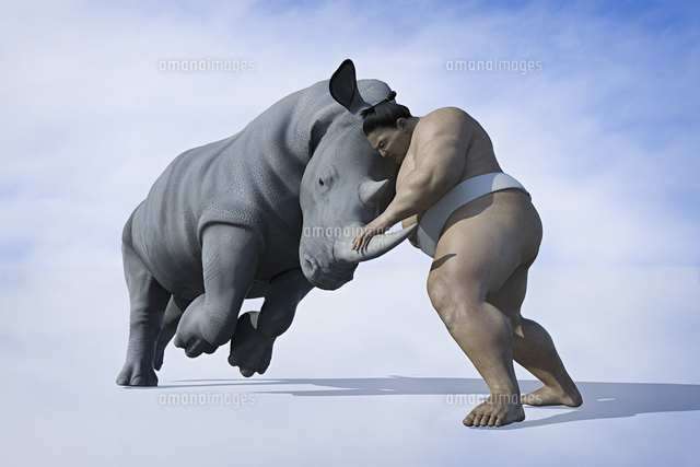 Sumo wrestler fighting rhinoceros
