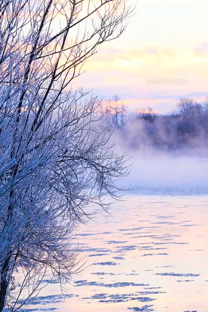 冬の風景11023020562の写真素材イラスト素材アマナイメージズ