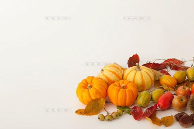 秋の実り 集合11026005336の写真素材イラスト素材アマナイメージズ