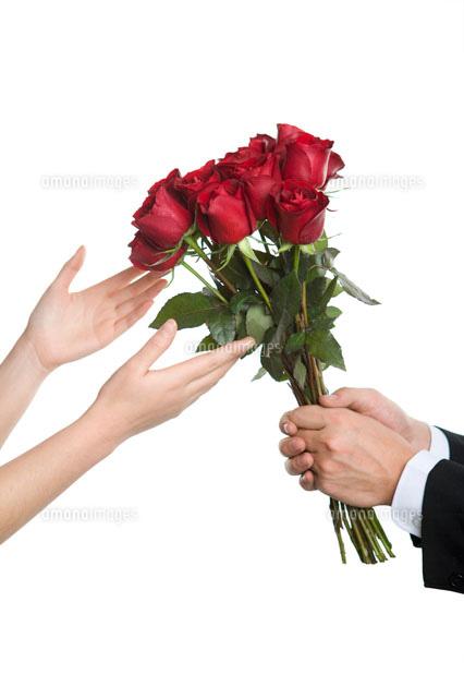 女性にバラの花束を渡す男性の手11069002680の写真素材イラスト素材
