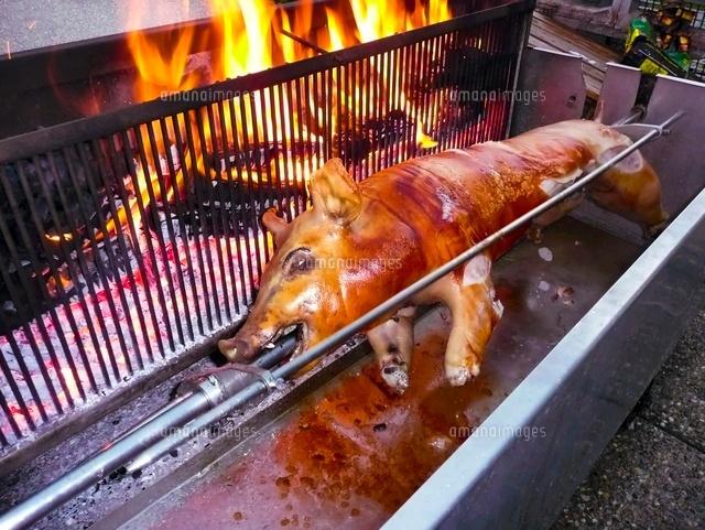 豚の丸焼き11069008111の写真素材イラスト素材アマナイメージズ