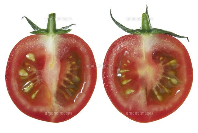 無料の動物画像 ぜいたくミニトマト 断面 イラスト