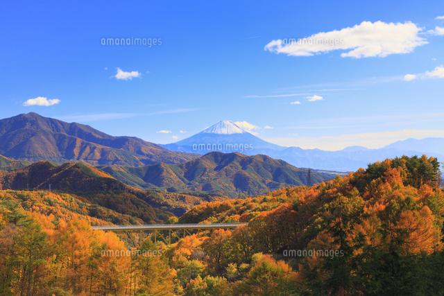 紅葉の八ヶ岳高原大橋と富士山11076021096の写真素材イラスト素材