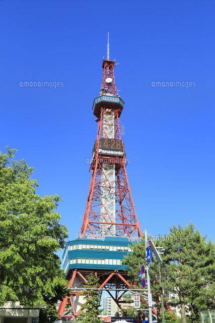 札幌大通公園のさっぽろテレビ塔11076030511の写真素材イラスト素材
