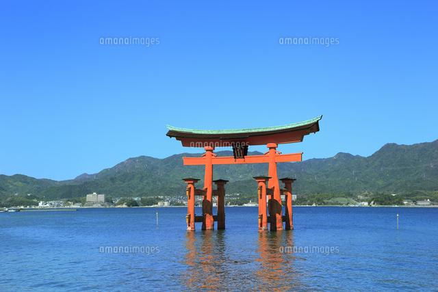 「厳島神社 フリー素材」の画像検索結果