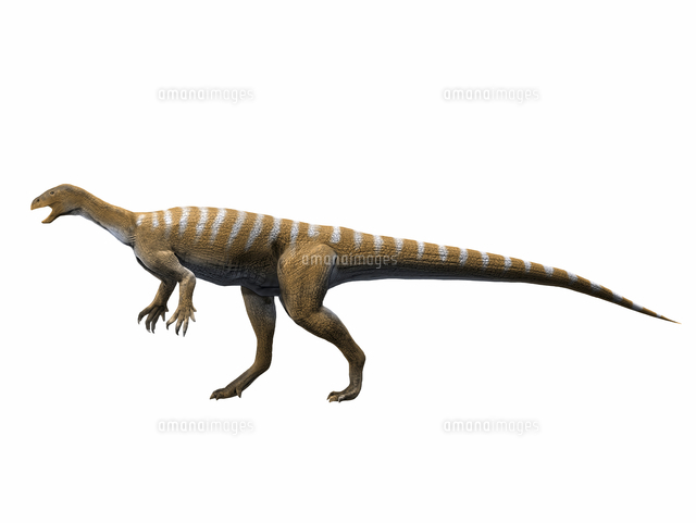 Thecodontosaurus antiquus, Lat...