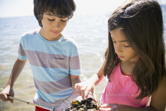 Boy and girl clam digging on beach