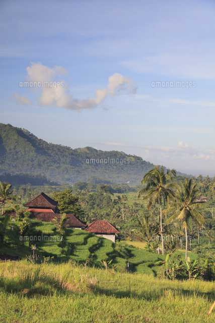 Indonesia, Bali, Sidemen Rice Terraces and Mountain Landscape
