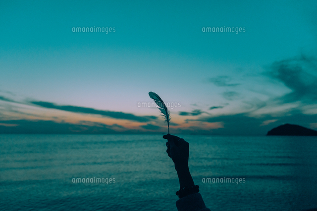 作品番号:11115052488  作品タイトル:Cropped Image Of Hand Holding Feather Against Sea During Sunset