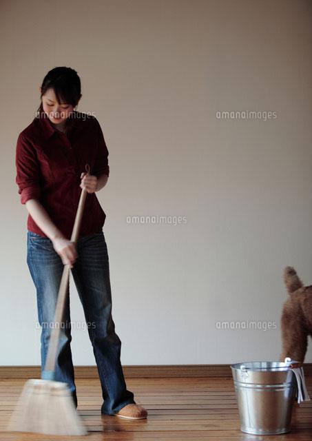 掃く ほうき で