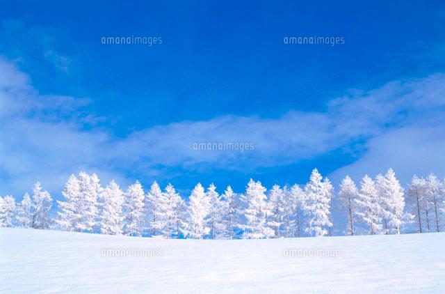 冬景色28144063919の写真素材イラスト素材アマナイメージズ