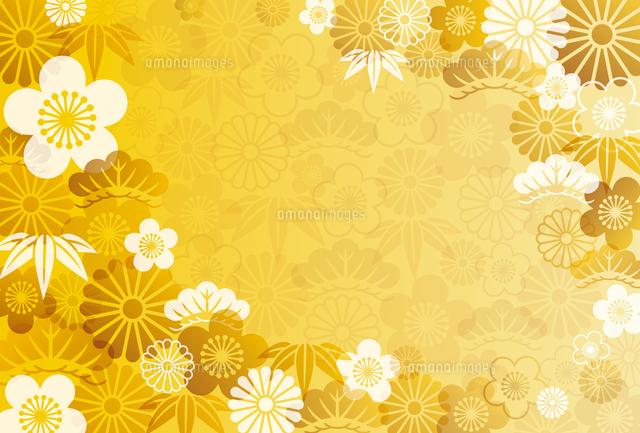 和柄60020000071の写真素材イラスト素材アマナイメージズ