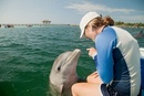 Young woman pointing at bottlenose dolphin