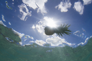 Underwater view of silhouetted pineapple floating on sea