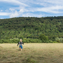 Rear view of boy running in field, Porta Westfalica, North Rhine Westphalia, Germany