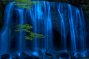 Long exposure of waterfall with branch of Maple tree with green leaves in foreground.