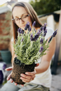 A young woman holding a rooted lavendar plant with purple flowers.