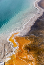 USA, Yellowstone Park, Hot spring, Black Pool, close-up