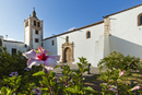 Hibiscus flowers and the 17th century Santa Maria Cathedral in this historic former capital, Betancuria, Fuerteventura, Canary I