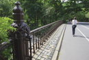 Jogger in Central Park, Manhattan, New York City, New York