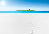虹の下を歩くカモメの親子 合成 07800014144| 写真素材・ストックフォト・画像・イラスト素材|アマナイメージズ