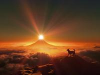 富士山の日の出と犬のシルエット 10185002445| 写真素材・ストックフォト・画像・イラスト素材|アマナイメージズ