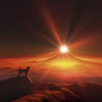 富士山の日の出と犬のシルエット 10185002552| 写真素材・ストックフォト・画像・イラスト素材|アマナイメージズ
