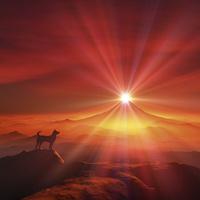 富士山の日の出と犬のシルエット 10185002554| 写真素材・ストックフォト・画像・イラスト素材|アマナイメージズ