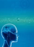 人体の頭脳のイメージ(青) CG                               10596000131| 写真素材・ストックフォト・画像・イラスト素材|アマナイメージズ