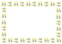 夏パターン・貝殻 10690000022| 写真素材・ストックフォト・画像・イラスト素材|アマナイメージズ