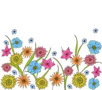 イエロー&ブルー&ピンク系フラワーD 10928000105| 写真素材・ストックフォト・画像・イラスト素材|アマナイメージズ