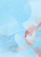 金魚 11007065769| 写真素材・ストックフォト・画像・イラスト素材|アマナイメージズ