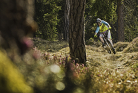 Young male mountain biker cycling downhill in forest 11015248435| 写真素材・ストックフォト・画像・イラスト素材|アマナイメージズ