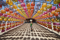 Female tourist looking at rows of lanterns honoring buddha birthday in Naksansa Temple, Naksansa, Yangyang, Gangwon province, So