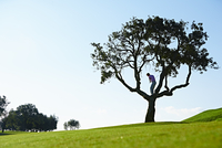 Low angle view of golfer standing in tree swinging golf club