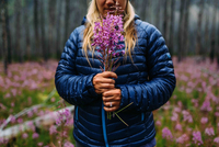 Cropped view of mid adult woman wearing padded coat holding wildflowers, Moraine lake, Banff National Park, Alberta Canada 11015270325| 写真素材・ストックフォト・画像・イラスト素材|アマナイメージズ