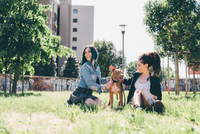 Two young women sitting with pit bull terrier in urban park 11015288345| 写真素材・ストックフォト・画像・イラスト素材|アマナイメージズ