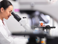 Female scientist examining cell cultures growing in a culture jar by using a inverted microscope in the laboratory 11015288520| 写真素材・ストックフォト・画像・イラスト素材|アマナイメージズ