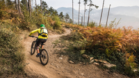 Mid adult woman cycling up dirt track, Finale Ligure, Savona, Italy