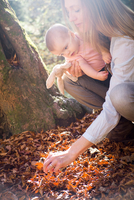 Mother and daughter crouching investigating leaves on forest floor 11015294232| 写真素材・ストックフォト・画像・イラスト素材|アマナイメージズ