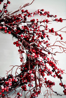 Cropped shot of twig and red berry christmas wreath 11015303544| 写真素材・ストックフォト・画像・イラスト素材|アマナイメージズ
