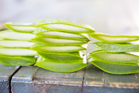 Stacked sliced aloe leaves on table in handmade soap workshop 11015304000| 写真素材・ストックフォト・画像・イラスト素材|アマナイメージズ