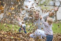 Mother and children playing with fallen leaves 11015312550| 写真素材・ストックフォト・画像・イラスト素材|アマナイメージズ