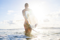 Rear view of woman carrying surfboard in sunlit sea, Nosara, Guanacaste Province, Costa Rica 11015313290| 写真素材・ストックフォト・画像・イラスト素材|アマナイメージズ