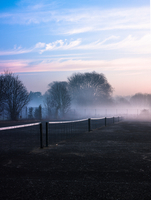Row of tennis nets in misty park at sunrise